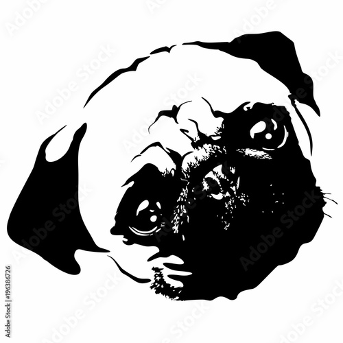 Spoed Foto op Canvas Draw Pug Puppy Dog Portrait Black and White Vector