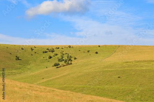 Foto op Plexiglas Honing Green Hilly Landscape