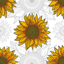 Seamless Pattern With A Sunflower, Bright Flower And Outline On White Background