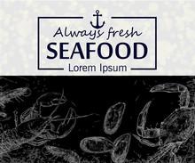 Seafood Hand Drawn Vector Illustration. Crab, Lobster, Shrimp, Oyster,