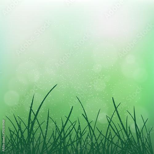 Foto op Canvas UFO nature grass on blur green bokeh