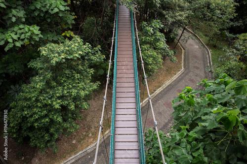 Suspension bridge in the Kuala Lumpur Eco Park Poster