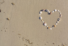 Heart Shaped From Shells Lies ...