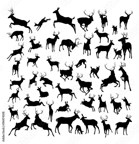 Vászonkép Deer animal silhouettes