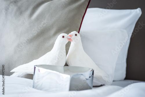 Tauben Hochzeit Bett Honey Moon Dekoration Hochzeitsnacht Buy This