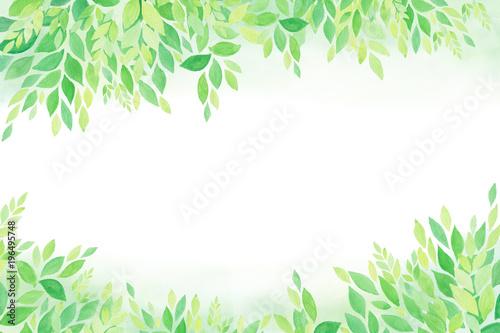 Plissee mit Motiv - グリーン エコロジーイメージ  水彩 手描き (von akira_photo)