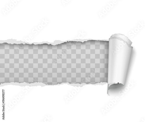 Tablou Canvas Vector realistic torn and twisted paper strip on white background