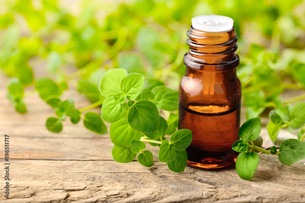 Fototapety, obrazy: Oregano oil and fresh oregano leaves on the wooden table