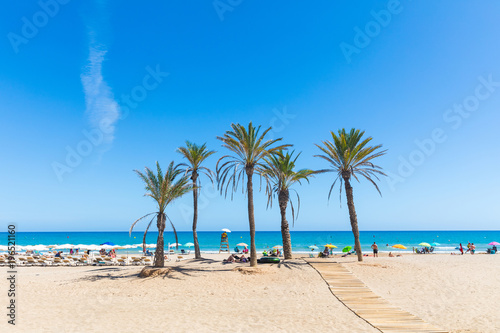 Seaside in Alicante, with palm trees on the beach Fotobehang