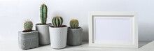 Panoramic View Of Cactuses In Concrete Diy Pots And Empty Frame On A White Wall Background