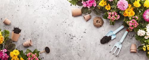Foto op Plexiglas Tuin Gardening Tools on Shale Background. Spring Garden Works Concept