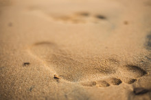 A Footprint In The Sand, With Colors Reminiscent Of Sunrise Or Sunset.