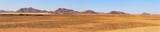 Fototapeta Sawanna - Namib-Naukluft Nationalpark