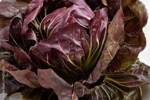 Fresh Red Trevisano Radicchio on marble