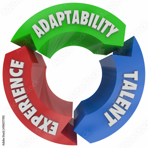 Valokuva Adaptability Talent Experience Cycle Words 3d Illustration