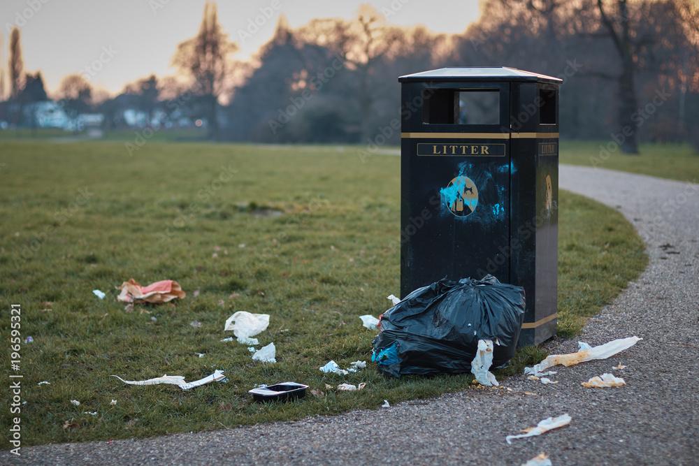 Fototapeta The litter bin .