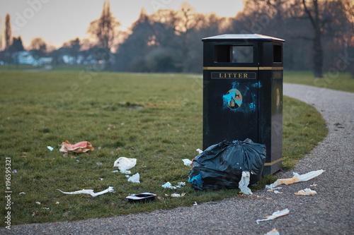 The litter bin . Canvas Print