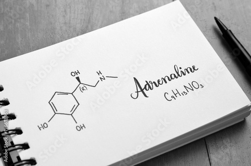 Fotografie, Obraz  ADRENALINE Chemical Formula and Structure in Notebook