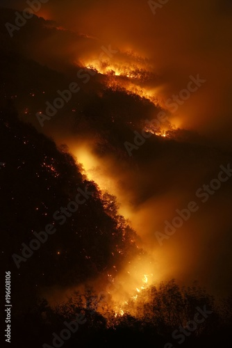 Night photography of a wildfire in a mountain forest Poster Mural XXL