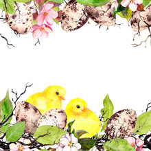 Easter Eggs, Chicks, Grass And Pink Flowers. Watercolor Easter Card