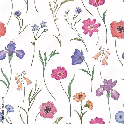Piękny kwiatowy wzór. Ilustracja wektorowa kwiat. Pole kwiatów