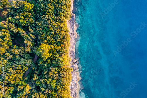 Coastal area with blue clear water and forest on land - aerial view taken by drone