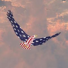 Obraz na Szkle Niebo Freedom