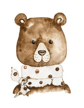 Teddy Bear. Watercolor Illustration: Brown Bear With A Scarf.