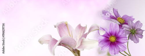 Foto op Canvas Lilac pink flowers gardening