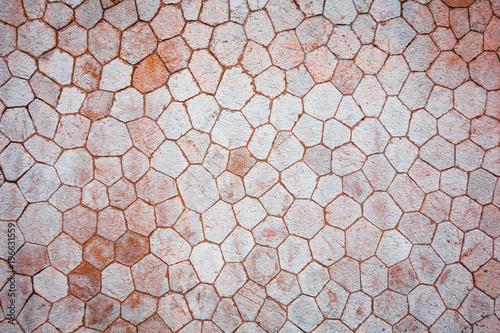 Fotografia  octagon wall texture in warm colors