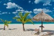 panorama of the Eagle Beach of Aruba Caribbean island with white sand and palm trees in the tropical scenery of the Netherlands Antilles