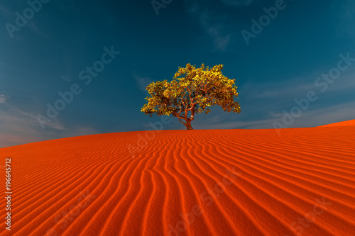 Foto op Plexiglas Rood traf. Stunning view of rippled sand dunes and lonely tree growing under amazing blue sky at drought desert landscape. Global warming concept. Nature background