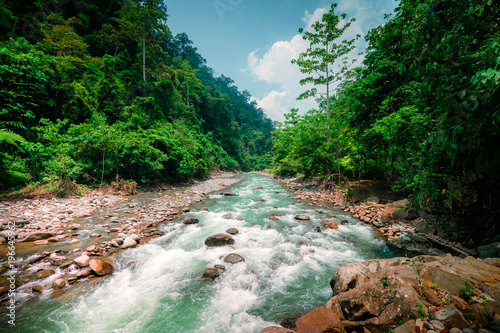 Door stickers Forest river Mysterious mountainous jungle with trees leaning over fast stream with rapids. Magical scenery of rainforest and river with rocks. Wild, vivid vegetation of tropical forest. North Sumatra, Indonesia.
