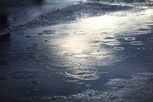 Rain Puddles On A Pavement In ...