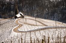 Famous Heart Shaped Wine Road ...