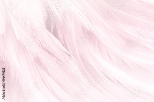 Fotografiet  Pink feather textured background.