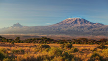 Arid Dry African Savanna In Late Evening With Mount Kilimanjaro, Highest Peak I Africa. Amboseli National Park, Kenya