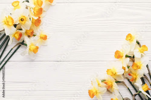 Cadres-photo bureau Narcisse beautiful fresh daffodils on white wooden background top view. hello spring image with bright yellow flowers border on rustic wood with space for text, flat lay. floral greeting card