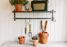 Shelf In A Potting Shed With G...