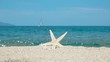 Couple starfish on sandy beach, blue sea and sailboat in background