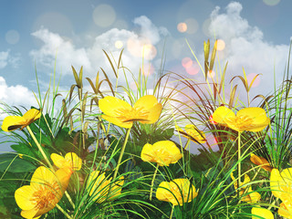 Fototapeta3D landscape of a close up of buttercups and grass
