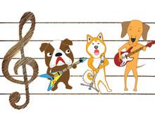 犬のコンサート。犬が...