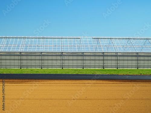 Fototapety, obrazy: ビニールハウスのある春の畑