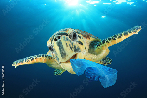 Poster Tortue Plastic pollution problem - Sea Turtle eating plastic bag polluting ocean