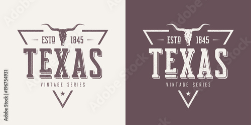 Fotografie, Obraz  Texas state textured vintage vector t-shirt and apparel design,