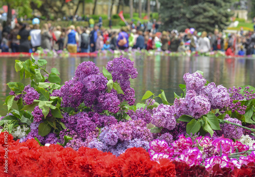 Fotografia  red carnations and lilacs on a marble military memorial