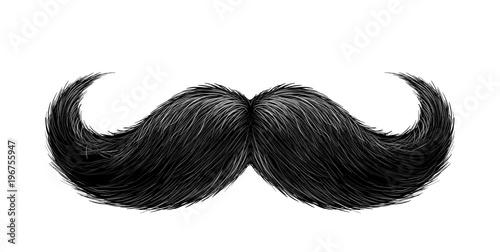Vector realistic black mustache Canvas Print