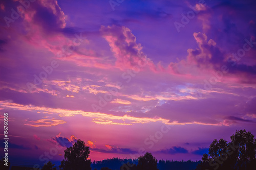 Spoed Foto op Canvas Violet the sunrise over the trees