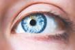 canvas print picture - Blaues Auge und Wimpern natürlich, Seitenaufnahme