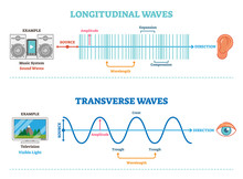 Longitudinal And Transverse Wa...